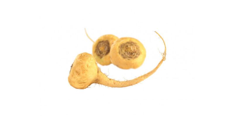 Image Of Root Vegetable Maca