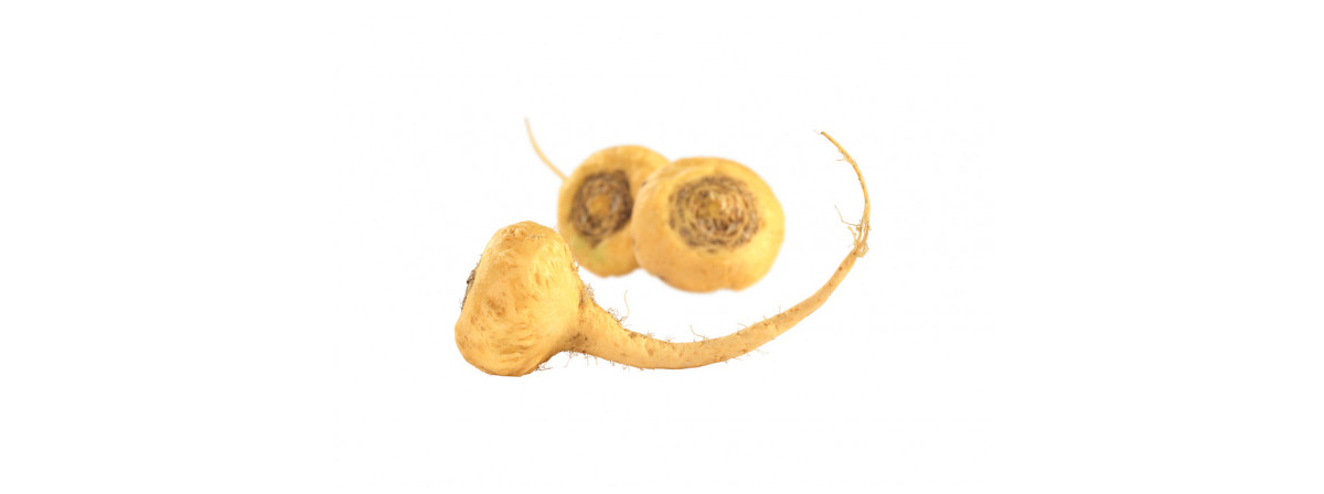 Image Of Root Vegetable Maca